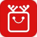 路口app下载_路口app最新版免费下载