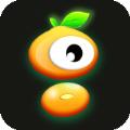 毛豆视界app下载_毛豆视界app最新版免费下载