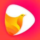 鸽迷app下载_鸽迷app最新版免费下载