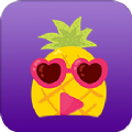 菠萝蜜app下载_菠萝蜜app最新版免费下载