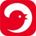 电巢app下载_电巢app最新版免费下载