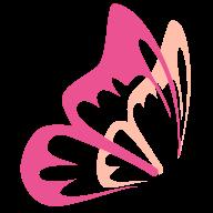 花蝶浏览器app下载_花蝶浏览器app最新版免费下载