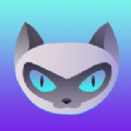 夜猫体育app下载_夜猫体育app最新版免费下载