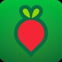 叮咚买菜安卓版app下载_叮咚买菜安卓版app最新版免费下载