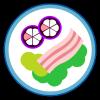 菜菜去水印app下载_菜菜去水印app最新版免费下载